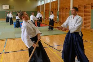 Aikidotraining mit Frank Koren in Linz & Kremsmünster im April 2019 - AikidoTraining-Kremsmuenster-Koren-Frank-2019-04-9309.jpg -