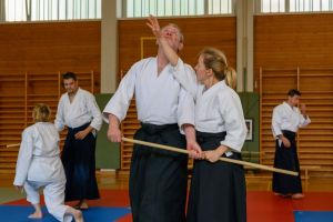 Aikidotraining mit Frank Koren in Linz & Kremsmünster im April 2019 - AikidoTraining-Kremsmuenster-Koren-Frank-2019-04-9364.jpg -