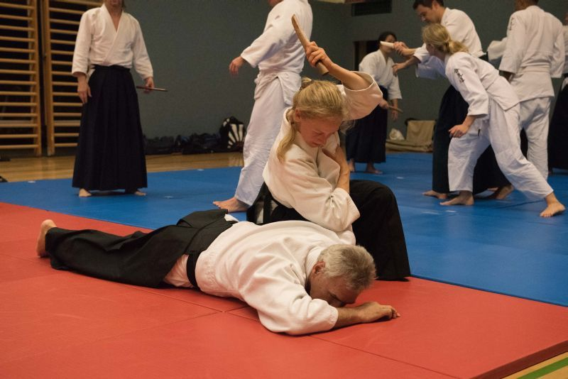 Aikido Training Linz, Mai 2016