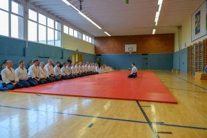 Aikidotraining mit Frank Koren in Linz & Kremsmünster im April 2019 - AikidoTraining-Linz-Koren-Frank-2019-04-9099.jpg -