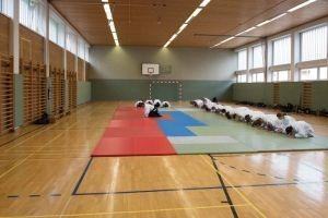 Aikidotraining in Kremsmünster / Kremstal mit Prof. Junichi Yoshida, April 2017 - Reshigi am Beginn des Trainings