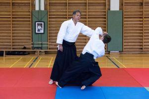 Aikidotraining in Kremsmünster / Kremstal mit Prof. Junichi Yoshida, April 2017 - Kokyoho
