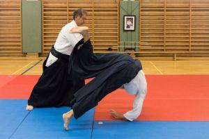 Aikidotraining in Kremsmünster / Kremstal mit Prof. Junichi Yoshida, April 2017 - Kokyonage